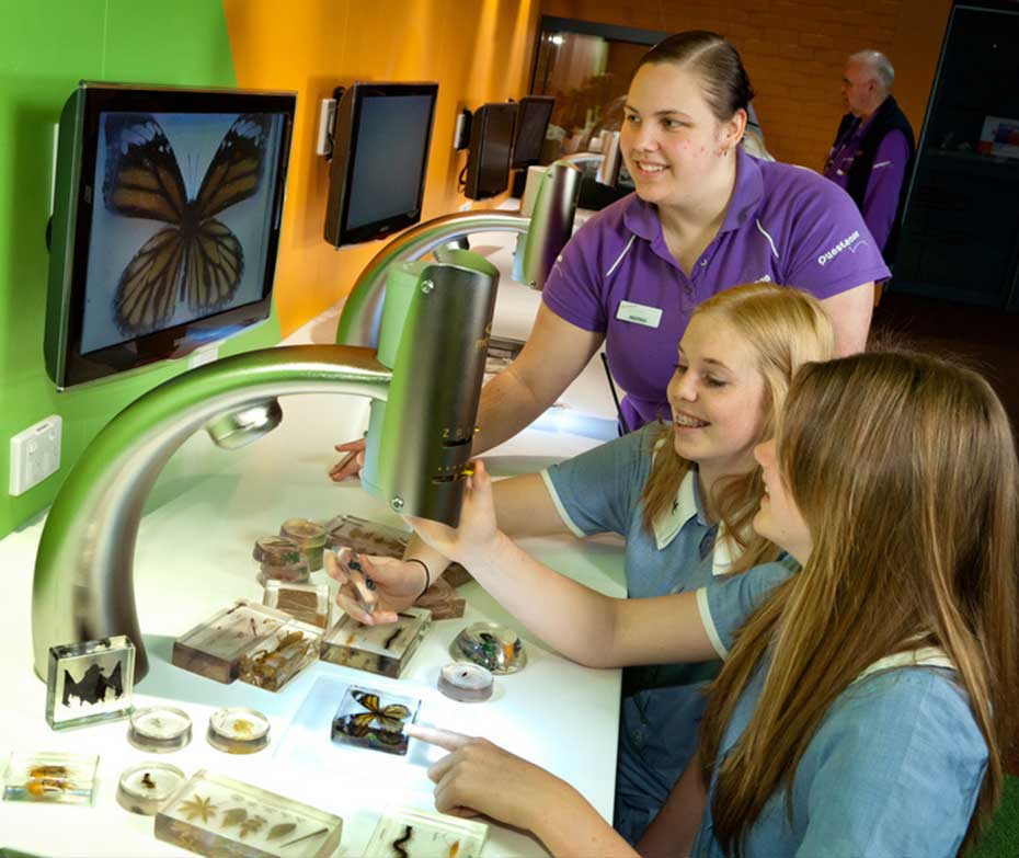 Two school girls looking at a butterfly under a microscope with a Questacon staff member looking on