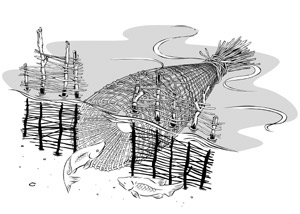 Fishtrap diagram