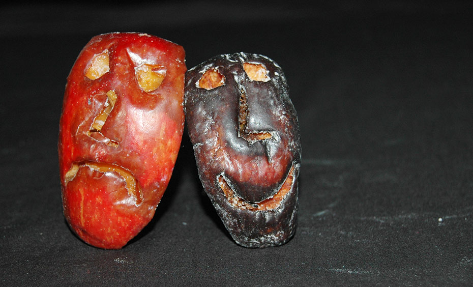 Two apple wedges with faces carved into them. The left apple is red and mouldy with a sad face. The right apple is black and withered with a smiley face.