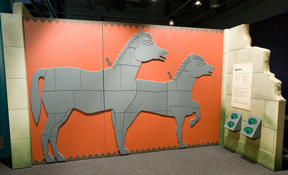 A orange wall with fake stone supporting walls. On the orange wall there are two pictures of grey horses with arrows pointing to their necks.