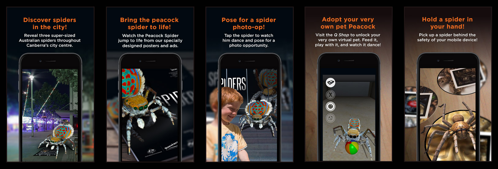 Various screenshots of the spiders app.