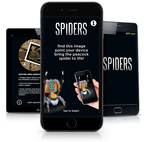 images of the spiders app on various mobile devices