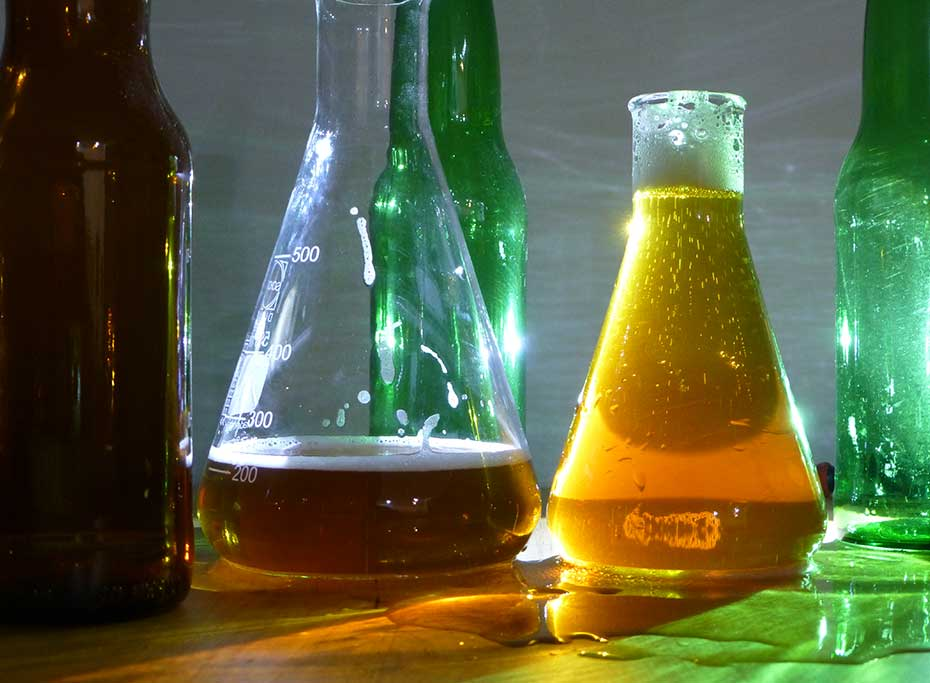 A photograph of beakers full of beer