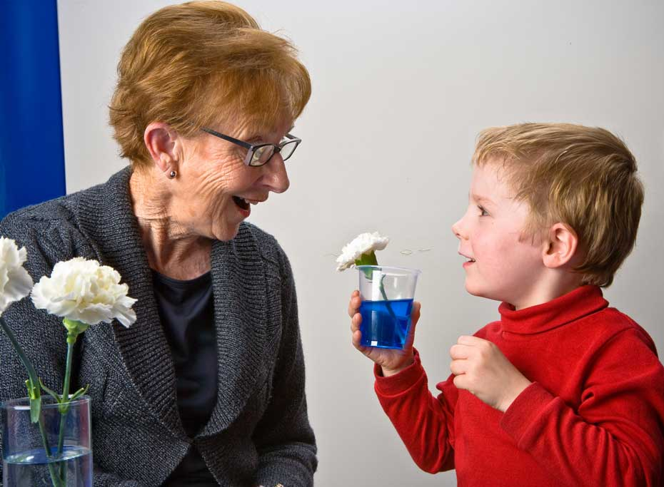 an elderly woman looking at a young boy who is holding a glass with a flower in it.