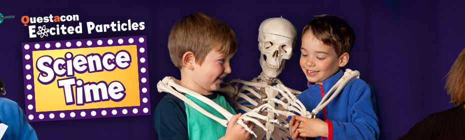 Two young boys playing with a model skeleton.