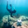 Alex Goad reaches for a piece of artificial reef under water