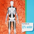 "A picture of a skeleton with a label of ""Your bones are 22% water"""