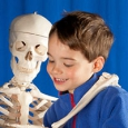 A young boy standing beside a human model skeleton.