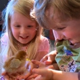 Two small children holding a baby chicken.