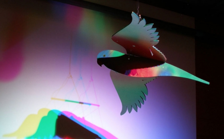 A wooden cut-out bird with different colours projected onto it's surface which then reflect on the wall behind