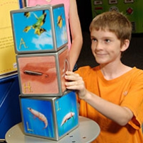 A girl and boy looking at three cube blocks that have different pictures of animals on each side. To the left is a yellow and blue information panel.