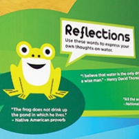 A green frog on a an information panel. The title is 'Reflections'.