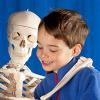 a skeleton and a young boy