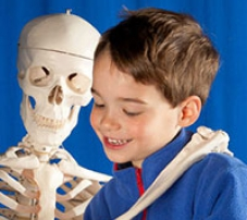 A young boy standing next to a skeleton