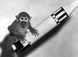 Black and white photo of a monkey perched on a rocket